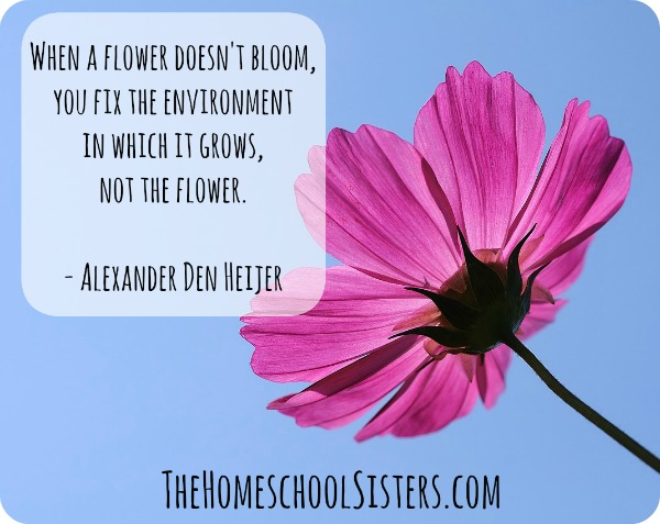 Just because it's different, doesn't mean it's less: Chatting with Shawna Wingert | The Homeschool Sisters Podcast