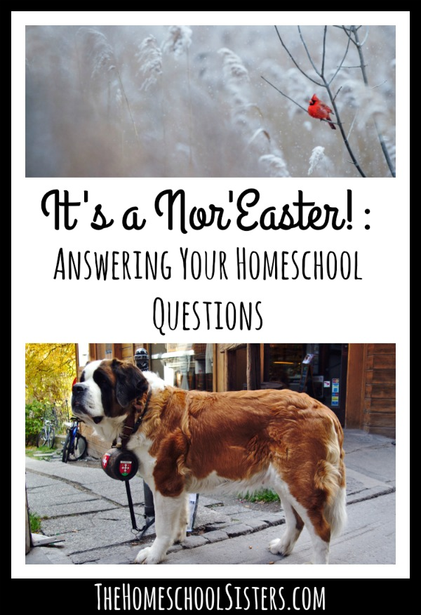 It's a Nor'Easter! Answering Your Homeschool Questions The Homeschool Sisters Podcast