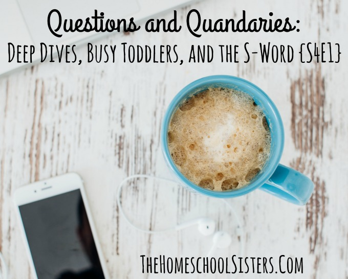 Questions and Quandaries: Deep Dives, Busy Toddlers, and the S-Word {S4E1} | The Homeschool Sisters Podcast