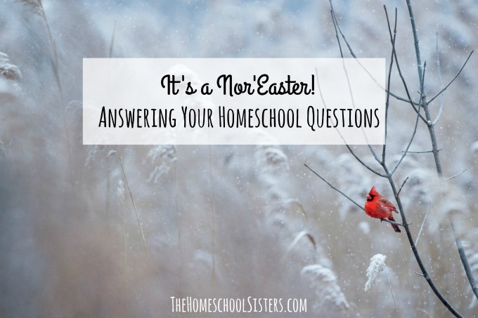 It's a Nor'Easter!: Answering Your Homeschool Questions