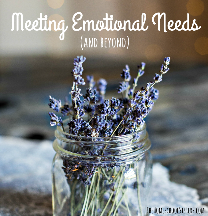 Meeting Emotional Needs (and beyond) {Episode 68} | The Homeschool Sisters Podcast