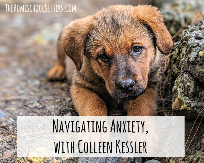 Navigating Anxiety, with Colleen Kessler {Episode 92} | The Homeschool Sisters Podcast